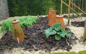 Hvilken jord gror mine blomster og planter bedst i?